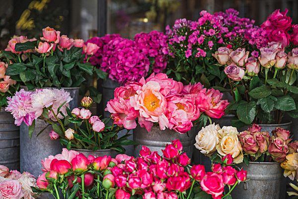 Цветы+